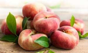 Инжирный персик: полезные свойства, описание сортов, выращивание, посадка и уход
