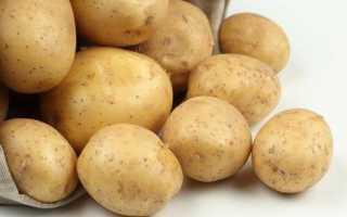 Картофель Адретта: описание и характеристика сорта, отзывы дачников с фото