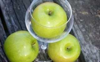 Вино из яблочного жмыха после соковыжималки: 3 рецепта приготовления в домашних условиях