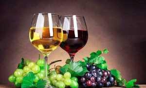Вино из красного винограда: 7 рецептов приготовления в домашних условиях
