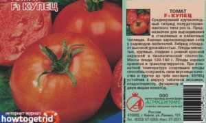 Томат Купец: характеристика и описание сорта, его урожайность с фото