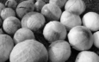 Семена капусты белокочанной: лучшие сорта с названиями и фото