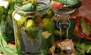 Огурцы с водкой на зиму: рецепты — хрустящие, маринованные в банках