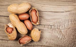 Арахис: вред и польза для организма человека, свойства и витамины ореха