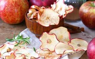 Как сушить яблоки в домашних условиях: в духовке, мультиварке и электросушилке