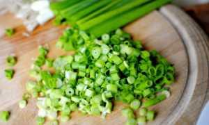 Как засолить зеленый лук на зиму в банках: 4 рецепта в домашних условиях с фото