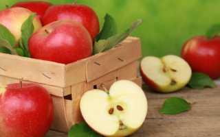 Как хранить яблоки на зиму в домашних условиях в погребе, на балконе и в холодильнике