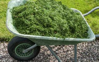 Можно ли мульчировать капусту скошенной травой