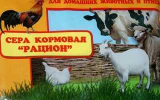 Сера для кур: для чего нужна и инструкция по применению, как правильно давать