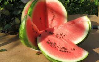 Арбуз Атаман: описание сорта и особенности выращивания с фото
