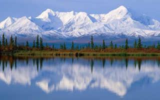 Лучшие сорта малины для Сибири: крупные, сладкие, ремонтантные с описанием и фото